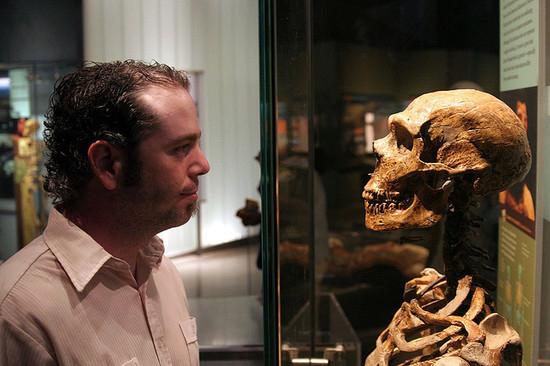 virus  u201cfossils u201d reveal neanderthals u2019 kin