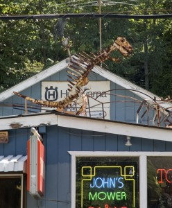 A dinosaur spotted just outside Port Jervis, New York. Photo by Mark Ryan.