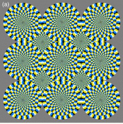Do you see the circles moving? (A. Kitaoka 2003)