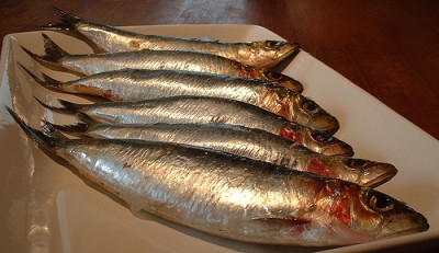 Fresh sardines, courtesy Flickr user FootosVanRobin