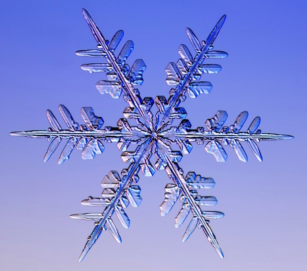 The Art and Science of Growing Snowflakes in a Lab ...