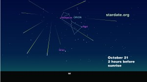 Look to Orion tomorrow morning to see the meteor shower (illustration courtesy stardate.org)