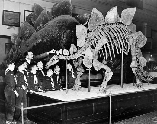 stegosaurus_SIarchives