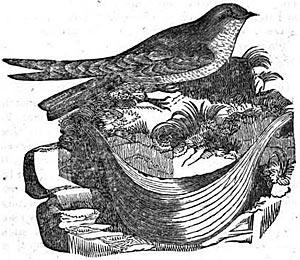 John Latham, 1831/Wikipedia