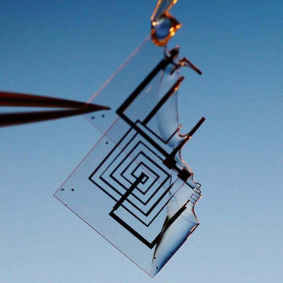 Scientists Invent Electronic Circuits That Dissolve in Water ...
