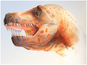A restoration of a Tyrannosaurus called 'Peck's Rex' showing lesions in the jaw and mouth. From the PLoS One paper.