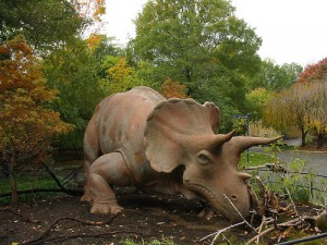 """Uncle Beazley"" the Triceratops on display at the National Zoo. From Flickr user Mo Kaiwen."