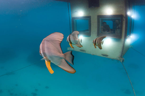 Wonderful Poseidon Underwater Hotel Credit Jesper Anhede Inside Inspiration Decorating