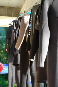 Wetsuits hanging to dry outside STRI's dive locker. Photo by Megan Gambino.