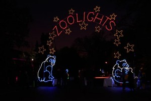 ZooLights arch with giant pandas near the zoo's Lion and Tiger Hill.