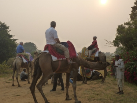 Camelback, Mystical India tour with Smithsonian Journeys