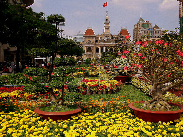 Flowers on Display for Tet in Saigon, Vietnam