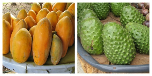 Papaya and Guanabana (soursop) fruit