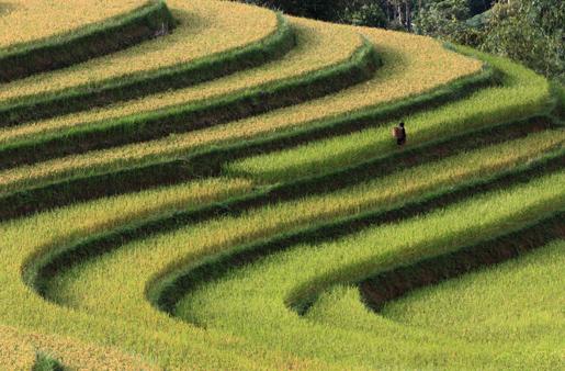 Yen Bai Province, Vietnam