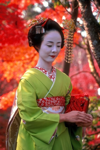 A Traditional Geisha in Japan   Photo by Tracey Taylor