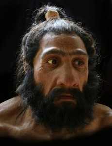 Starting with a cast skull, artist John Gurche builds layers of muscle, fat, and skin to create hyper-realistic busts of human ancestors featured in the new David H. Koch Hall of Human Origins at the Smithsonian's National Museum of Natural History. Pictured: Homo neanderthalensis