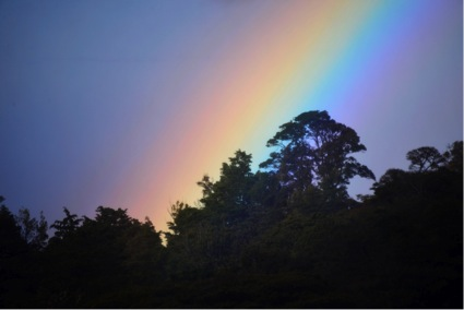 At the end of the rainbow in Monteverde (Photo by R. Szaro).
